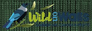 Wild on Walls