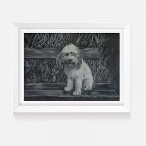 Indoor art black and white print of Maddie a Spoodle puppy
